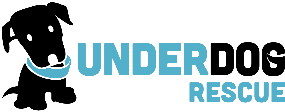 Underdog Rescue