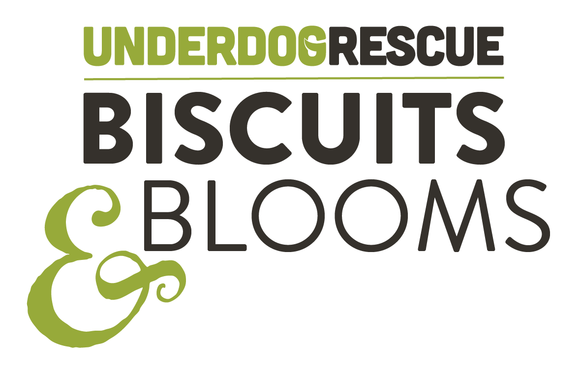 biscuits and blooms logo