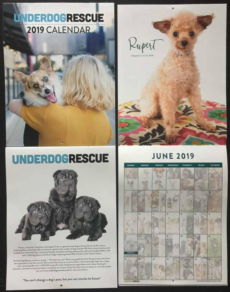 underdog-calendar-2019