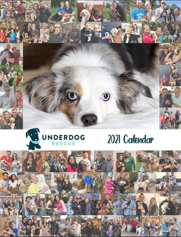 2021-underdog-calendar-cover