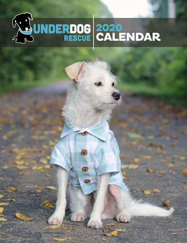 underdog-2020-calendar